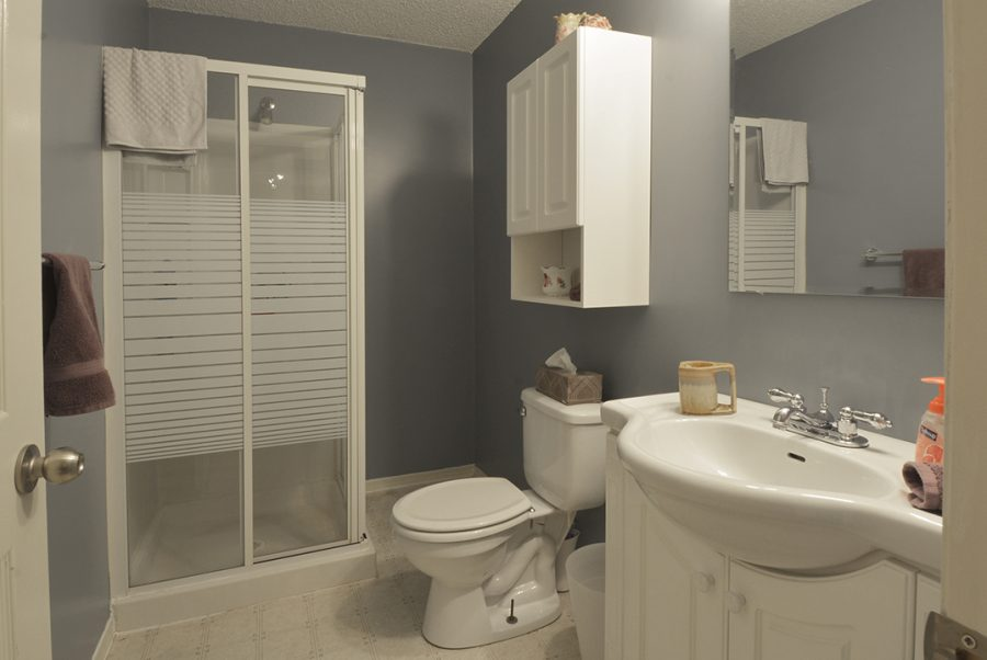13-Oakmont-Drive-Basement-Bathroom
