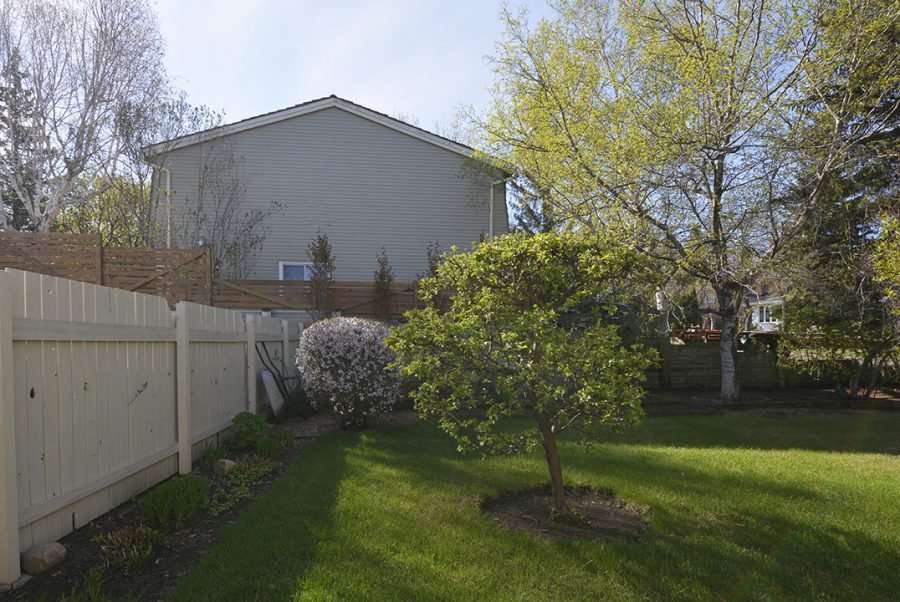 33 Woodcrest Backyard4