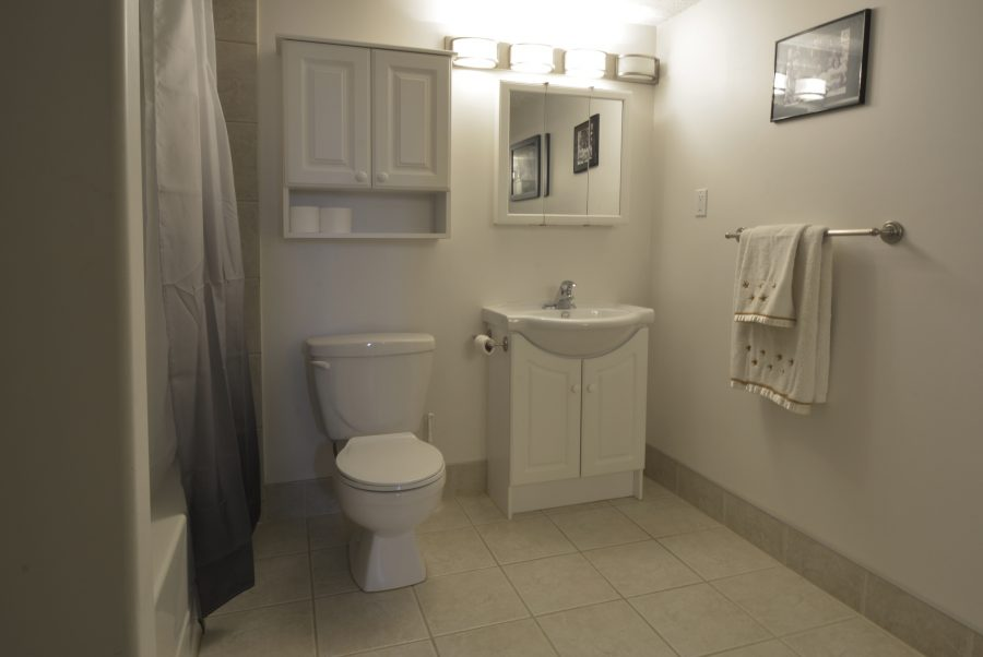 53415 RR262 Basement Bathroom