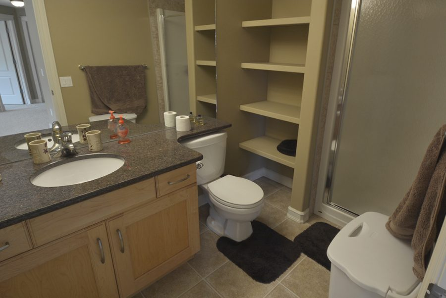 2 Oasis Court Basement Bath