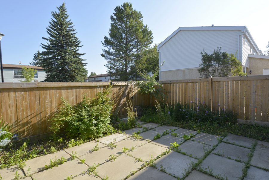 284 Grandin Village Backyard2
