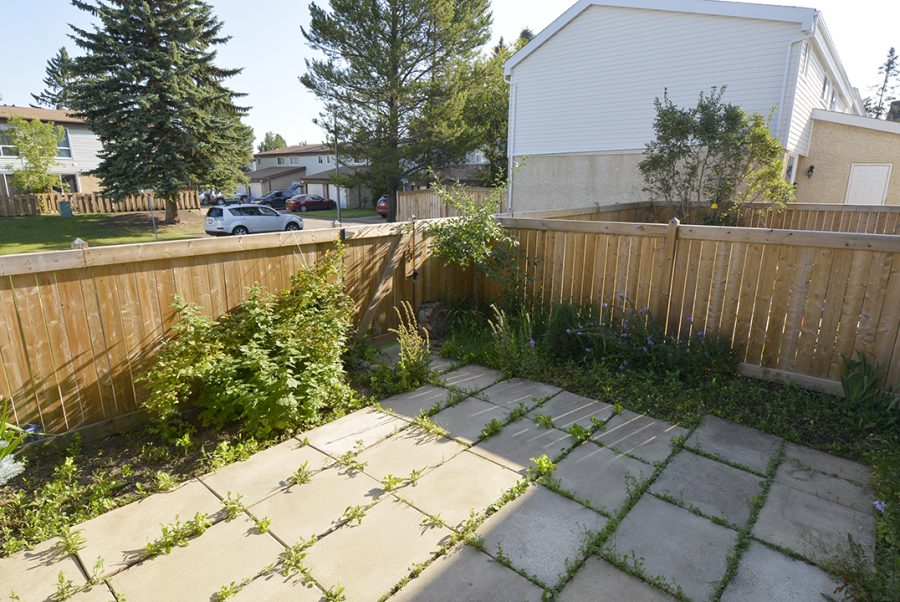 284 Grandin Village Backyard3