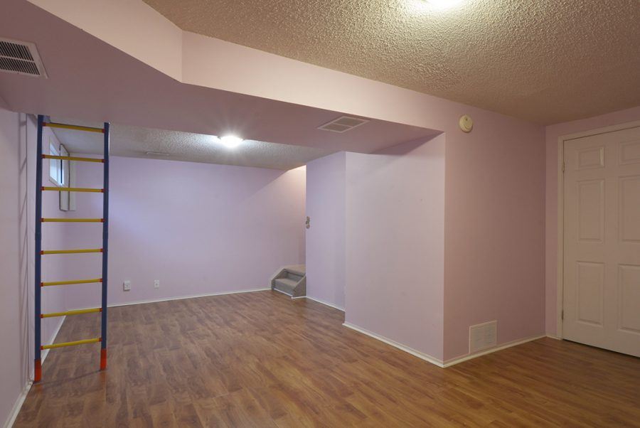 284 Grandin Village Basement1
